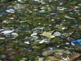 Drijvende vuilnisbelt Eck en Wiel; Weer roept vervuild slib om maatregelen