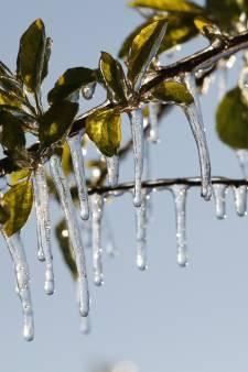Nét geen nachtvorst in Nederland, koudste temperatuur gemeten in Twente