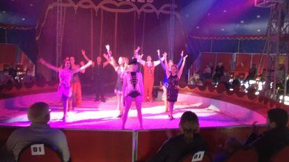 """VIDEO. Circus Barones start als eerste weer op: """"Na 100 geschrapte shows doet het deugd om weer op de planken te staan"""""""