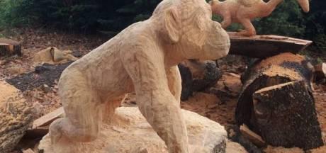 Welkom in de Gentse zoo waar je de dieren kan aanraken