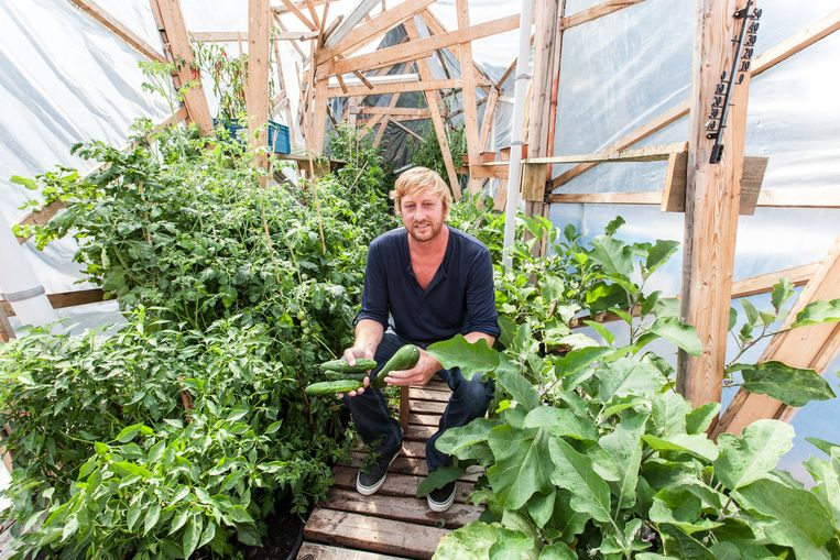 Dimitri Vandenberghe in een van de buurttuinen op het Rabot. Heel wat groenten en fruit gaan van hier naar de sociale kruidenier, en wat daar niet verkocht raakt, wordt niet weggegooid maar verwerkt tot bijvoorbeeld confituur en opnieuw verkocht.