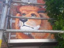 De leeuw in Almelo moet nog even wachten op zijn bevrijding