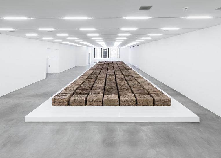 The Zurich Load, geperste poep door Mike Bouchet. Beeld