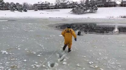 VIDEO. Zo red je een hond uit een ijzig meer