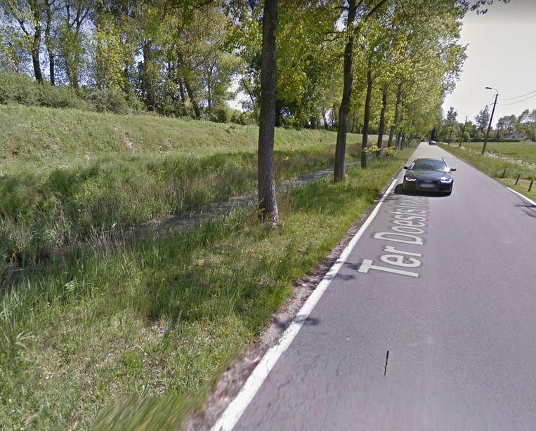 Het fietspad komt naast de bomen op het mountainbikepad.