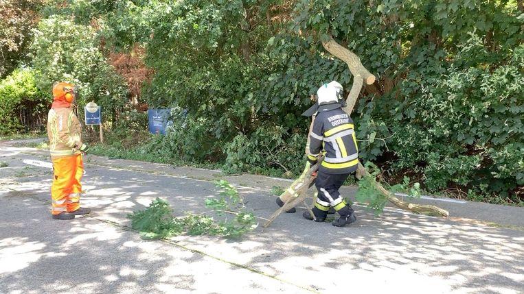 De brandweer verwijderde de zware tak van de rijbaan.