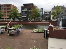 Veel meer drijvende tuintjes erbij op water in binnenstad Almelo