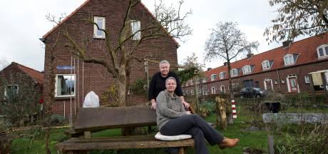Doesburg wil afname bomen beperken: zoektocht naar plekken voor nieuwe bomen