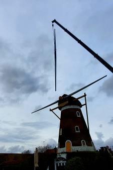 Nieuwe roeden voor Bavelse molen, de wieken draaien in maart weer