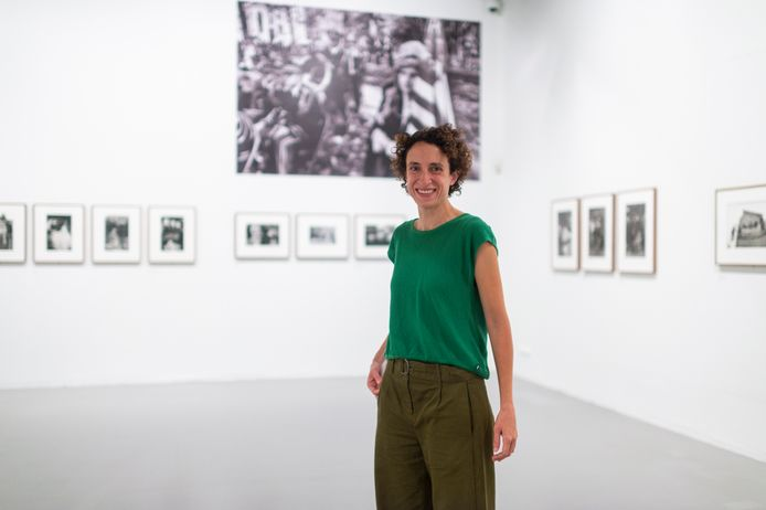 Assistent-curator Rein Deslé