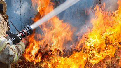 Woning in Neerpelt onbewoonbaar door brandende mesthoop
