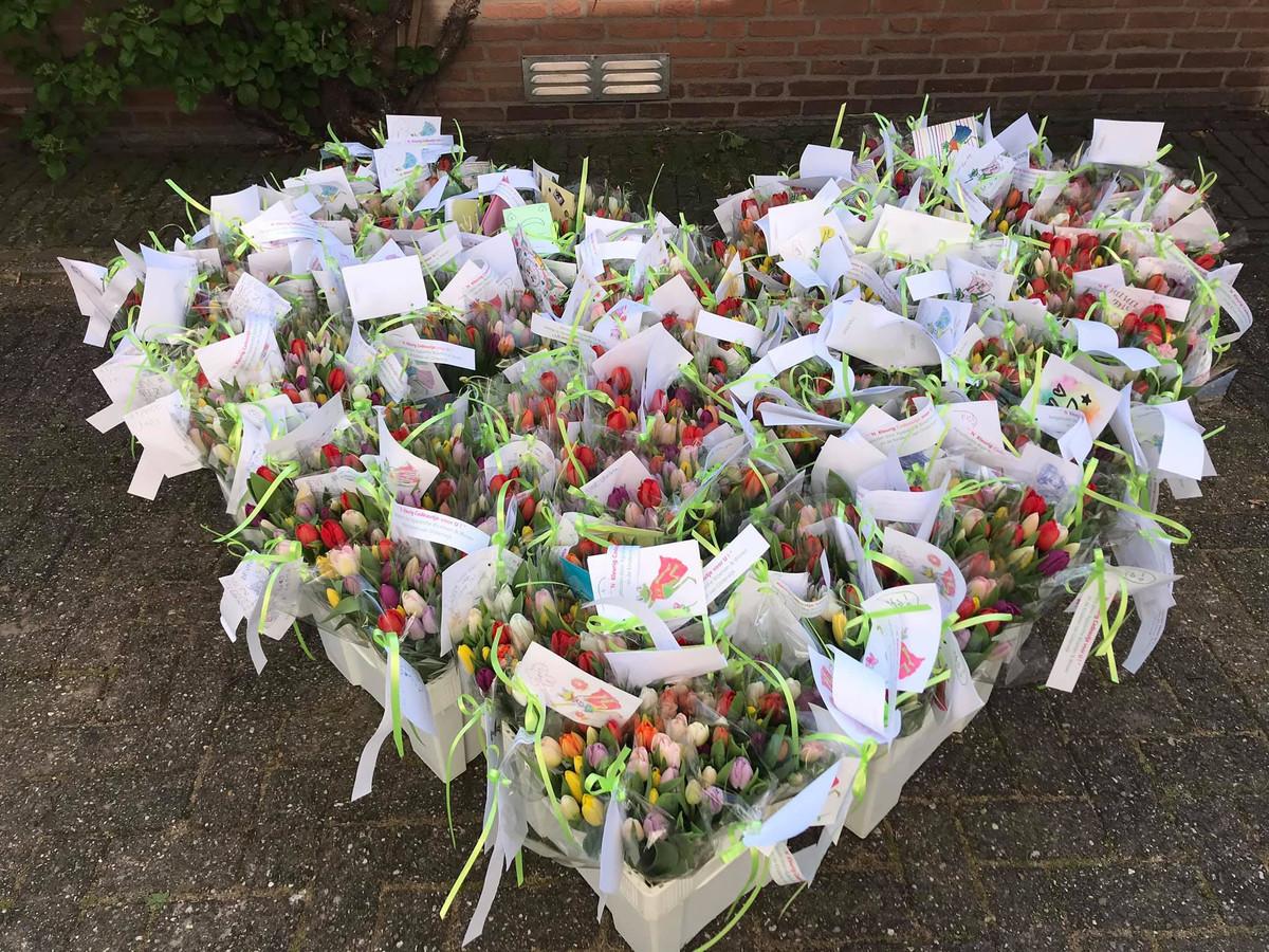 Tulpen staan klaar om uitgedeeld te worden in Oisterwijk