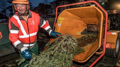 Achtste kerstboomverhakseling met verkiezing beste soep van Roeselare