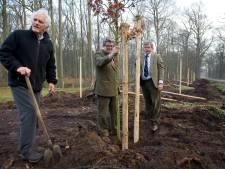 Het levensverhaal van Graaf Adolph (88), heer van Almelo