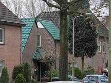 Kurzweg voert achterhoedegevecht over groen dak Oss