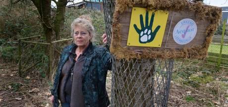 Doorstart Amerongse dierenopvang