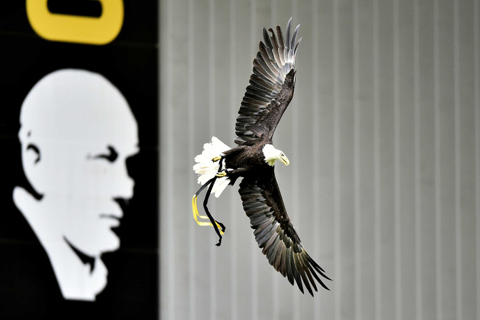 Clubsymbool Hertog van Vitesse maakt zijn vlucht door GelreDome.
