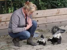 Bezoekers weer welkom bij Faunapark Flakkee