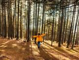 Wat je van bomen leren kan: coach legt uit waarom wandelen in het bos net nu zo belangrijk is