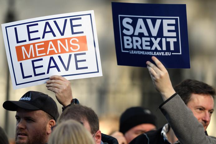 Pro-brexit-stemmers demonstreren voor het Britse parlement.