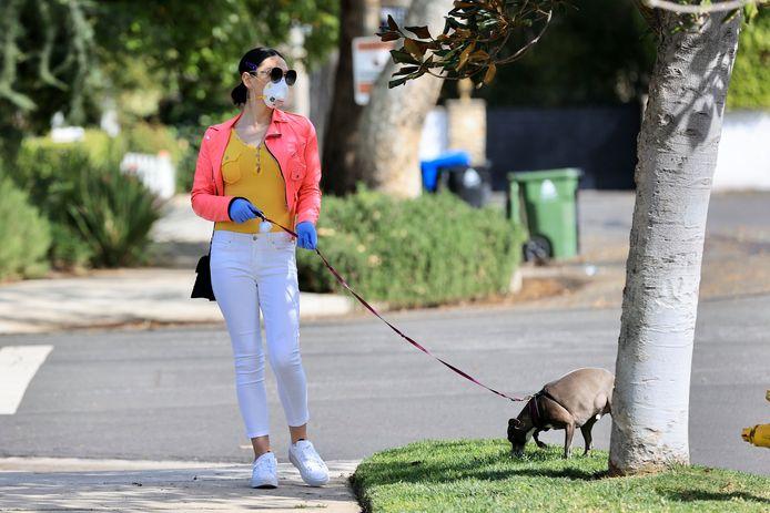 Is mijn huisdier vatbaar voor het coronavirus? Katten wel, honden niet.