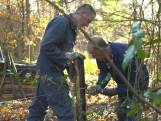 Limburgse boeren bouwen hek tegen Duitse zwijnen