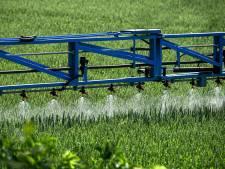 La suppression du glyphosate coûtera cher aux agriculteurs