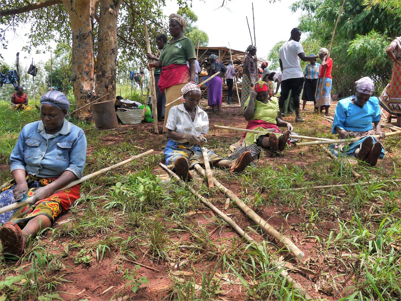 Vrouwen van Muranga krijgen bamboeles.