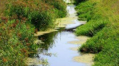 Ruimingswerken aan waterlopen