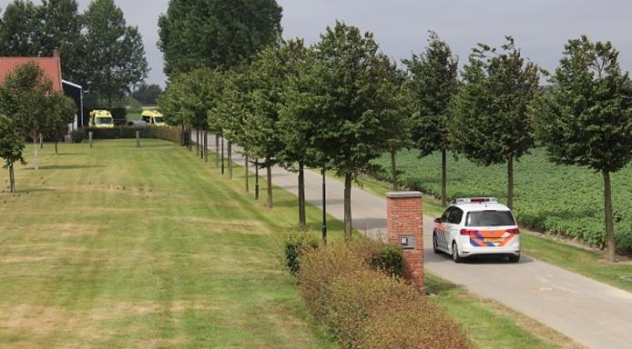 Twee ambulanceteams reden naar de boerderij in Wolphaartsdijk om te assisteren bij het ongeval.