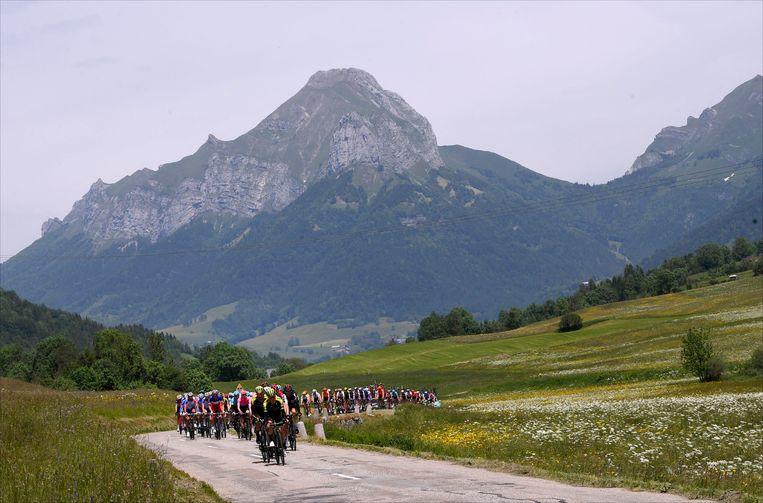Het peloton in de Dauphiné.