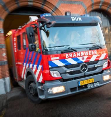 deskundige affaire dildo in Dordrecht