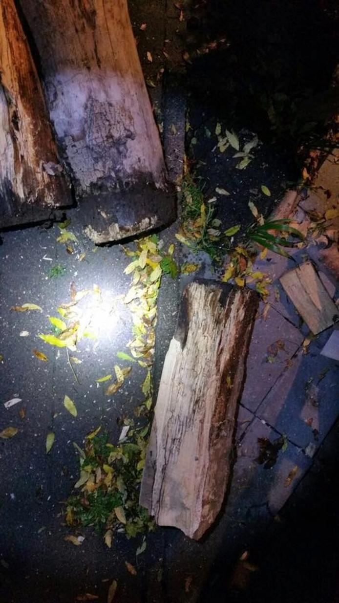 Het bankje werd finaal doormidden geslagen door de mini-bom.