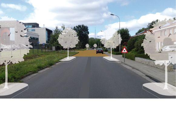 Boompjes moeten de Galgenstraat en Blakstraat visueel versmallen.