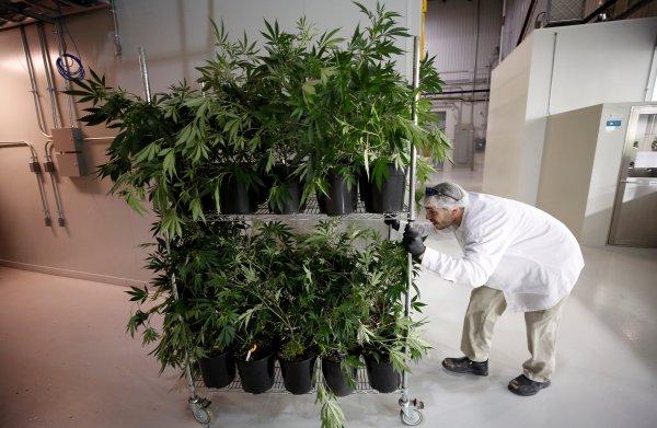 Nederlandse banken beleggen niet in cannabis; zijn ze te voorzichtig?
