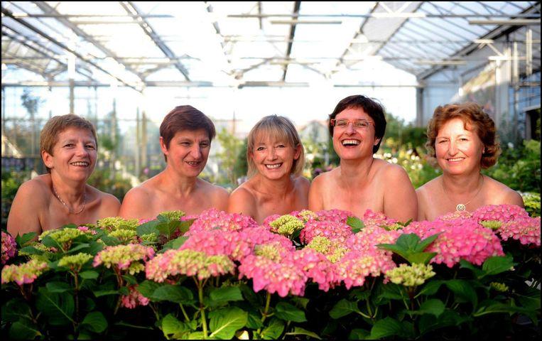 De Liberale vrouwen van Holsbeek staan schijnbaar in hun blootje achter een rij hortensia's in de boomkwekerij van Anne Van Goidsenhoven.
