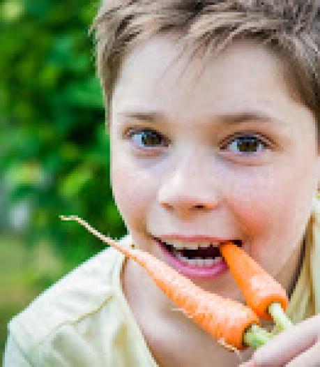 Kweek je eigen groente in Wierden