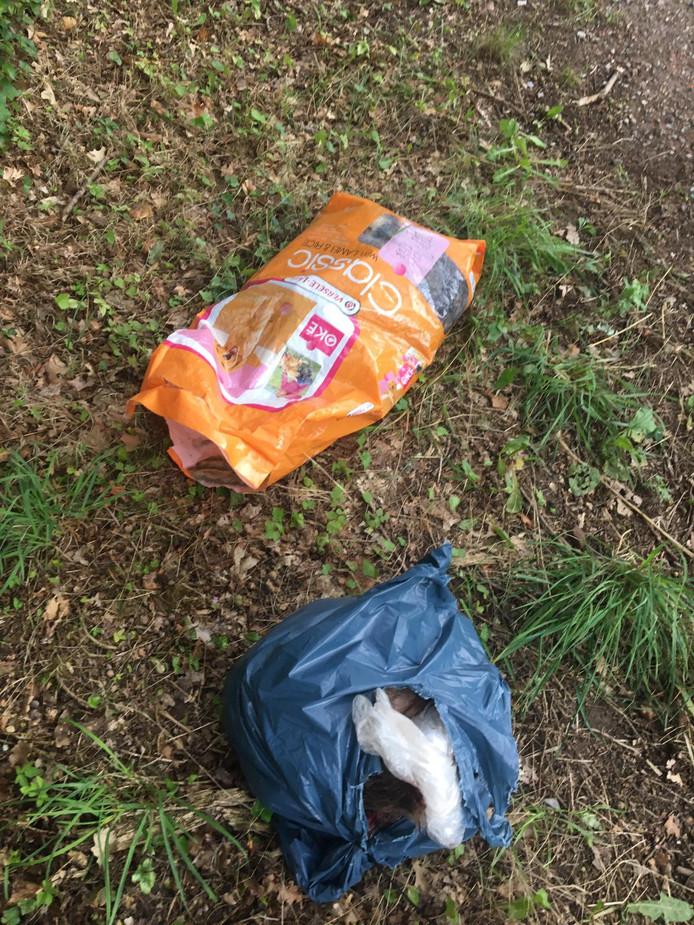 De dieren werden gedumpt in plastic zakken.