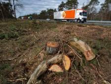 Groot onderhoud aan A28 tussen Wezep en Nunspeet is klaar, maar hoe zit het met die massale bomenkap?