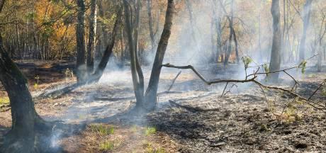 Kans op rookoverlast in Liessel en omgeving vanwege brand Deurnsche Peel