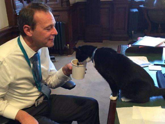 Palmerston ligt goed in de markt bij het aanwezige personeel.