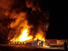 En weer gaat midden in de nacht  een kippenschuur in vlammen op