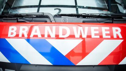 Grote brand in opslagloodsen in Nederlandse gemeente grenzend aan België