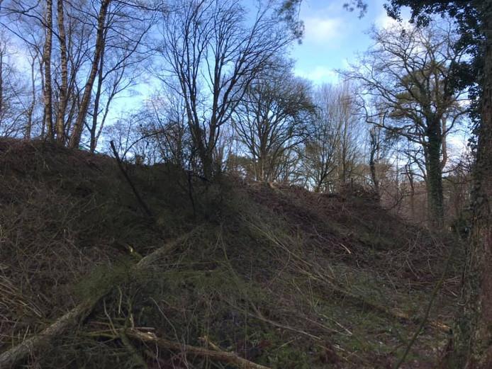 De aanleg van een rockpark op de voormalige vuilnisbelt aan de Holterweg ligt zeker stil tot na het broedseizoen.