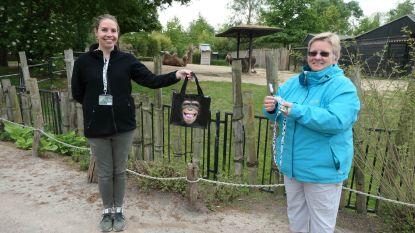 """Babygorilla staat symbool voor steunactie voor Zoo Antwerpen en Planckendael: """"Vanuit ons groot hart voor de dieren!"""""""