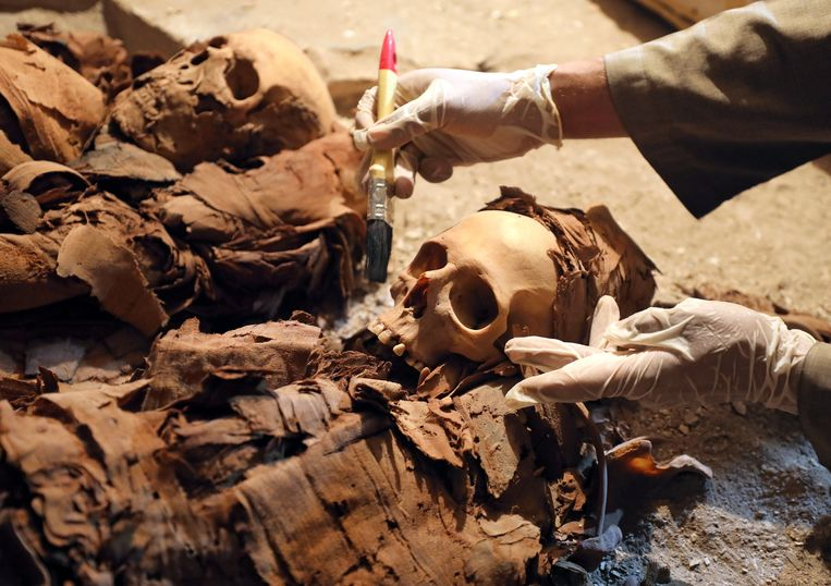 Het graf van Amenemhat, een goudsmid, werd recent ontdekt en zou het toerisme in Egypte een boost moeten geven.