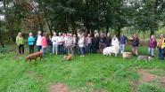 Hondenlosloopzone Zoersel blijft voor commotie zorgen: oppositie bezorgt 'to do-lijstje'