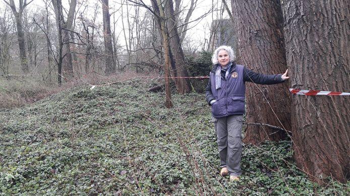 """Bewoonster Carolien van der Waarde van de Arnhemse wijk Elderveld bij het deel van het bos wat niet hoeft te wijken voor nieuwbouw van Moviera. ,,Zonder onze acties was dit ook plat gegaan."""""""