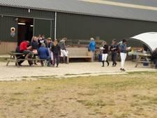 Amazone gewond na val van paard in Groesbeek