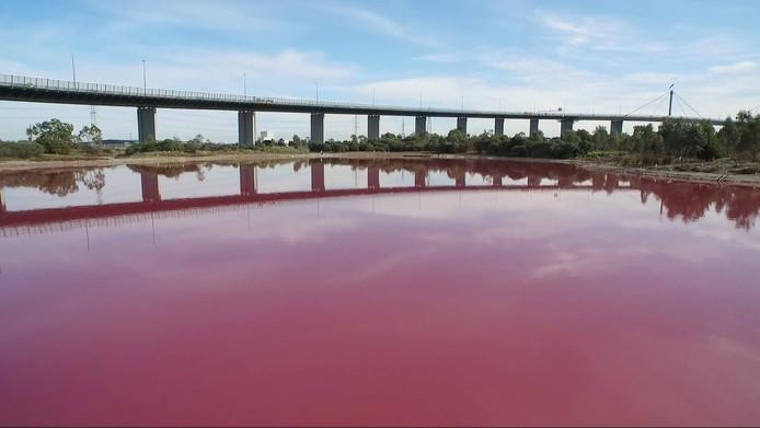 Het meer in Parks Victoria is roze gekleurd door de algen.